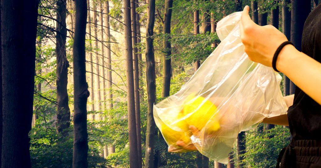 biodegradable vegetable bags